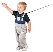 Play harness